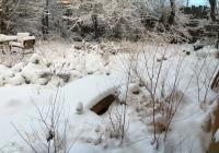 26_yard_winter