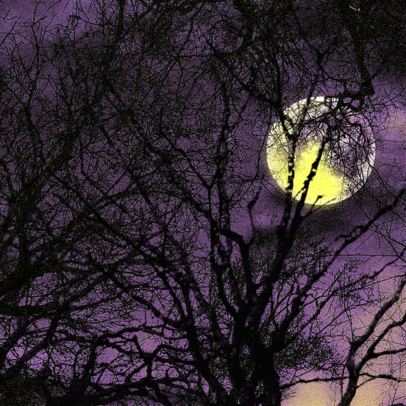 full_moon_alt_purple-2
